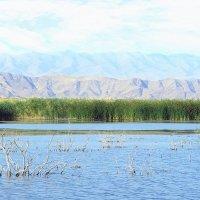 Озеро Тузкан :: Юрий Захаров
