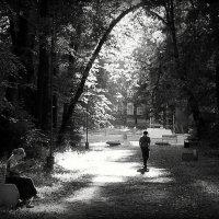 В летнем парке :: Надежда Бахолдина