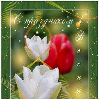 С праздником весны!!! :: Роман Бабаев