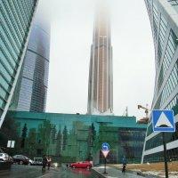 Москва Сити3 :: елена