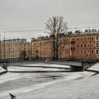 Река Пряжка :: Юрий Тихонов