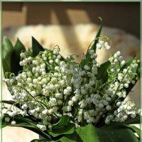 С Праздником,милые женщины !!! :: Лидия (naum.lidiya)