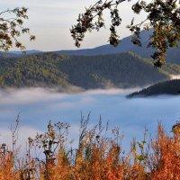 У колыбели тумана :: Сергей Чиняев