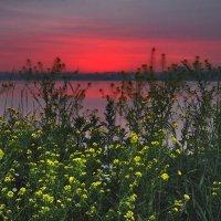 Рассвет в багровых тонах :: sergej-smv