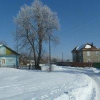 Зимний проселок. :: Александр Атаулин