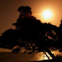 закат :: юрий мотырев