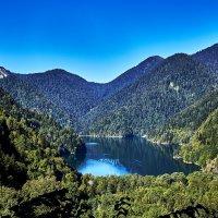 Озеро Рица :: Михаил Медведев