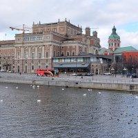 Стокгольм :: Swetlana V