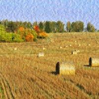Осенние краски :: Андрей Куприянов