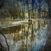 Еще пуста скамейка для свиданий,но ведь везде уже -ВЕСНА ...!!! :: Андрей Зайцев
