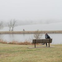 туман на озере :: MVMarina