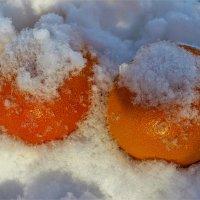 Апельсины на снегу :: Сергей Чиняев