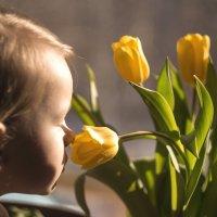 Весна :: Вера Арасланова