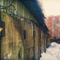 Стена :: Александр