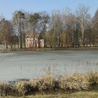 Весна в Марьино. :: Ирина Королева