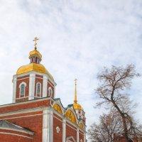 Христо-Рождественский храм :: Laborant Григоров