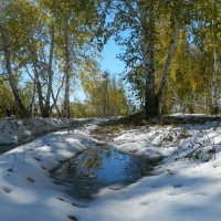Осень. Ранний снег :: Анна