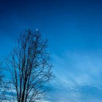 Сумерки над Ухтинскими полями :: Евгений Карелин