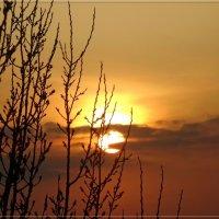 Закат. :: Чария Зоя