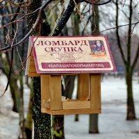 Полезная кормушка...Птички прочитали... и прониклись :: Сергей F