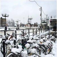 Вот такая велозима .. :: Игорь Абламейко