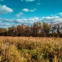 Золотая осень :: Виктор Куприянов