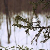 Новогодний шар в лесу :: Андрей Миронов