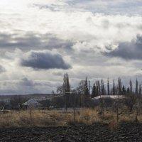 Сельский пейзаж. :: catonbox