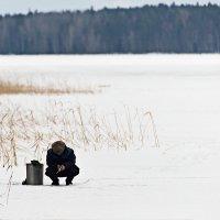 На рыбалке. :: Николай Тренин