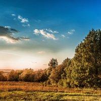 Там день и ночь кружится жёлтый лист :: Виктор Куприянов