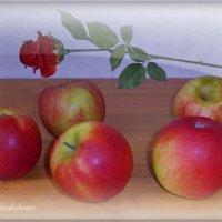 Яблоки и роза :: Nina Yudicheva
