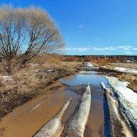 Дорог весенних бездорожье... :: Лесо-Вед (Баранов)