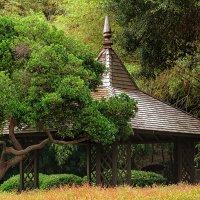 Huntington Library and Gardens :: Ростислав Бычков