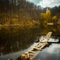 Старый мост :: Елена Бармакина