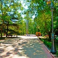 в парке :: Люша