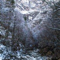 По дороге к водопаду :: Марина Юдина