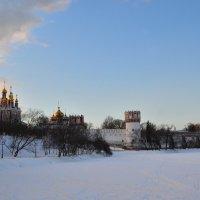 Панорамный вид на Новодевичий монастырь :: Денис Змеев