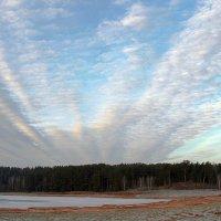 Вспаханное небо, запад. :: Нина