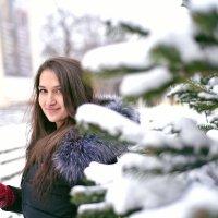Ель и она :: Ирина Шиа