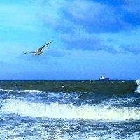 Штормит на море :: Виктор Шандыбин