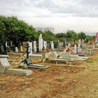 Кладбище Анапы :: Владимир Ростовский