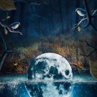 еще одна история о луне :: kostya Nero