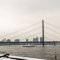 Рейн, мост, телевышка :: Witalij Loewin