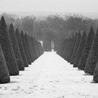 Версаль зимой :: Александр Глазков