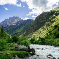 По дороге в Фиагдон (Северная Осетия) :: Риша 13