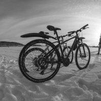 Велопрогулка :: Александр Решетников