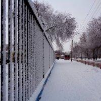 В городе снегопад :: °•●Елена●•° Аникина♀