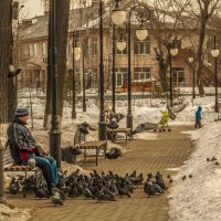 Мужик и голуби :: Андрей