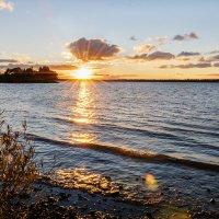 Солнце лучистое... :: Galina