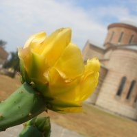 В Абхазии :: Марина Кит